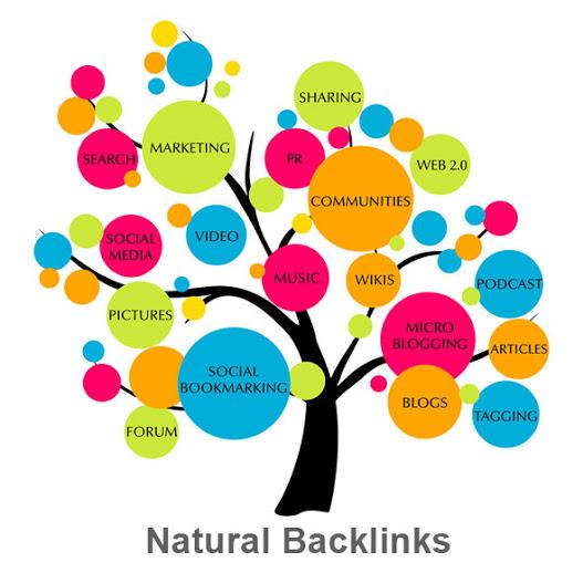 natural backlinks