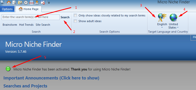 Micro Niche Finder - operation and advices