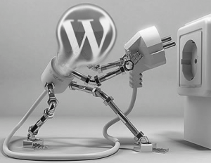 WordPress plugins conflict
