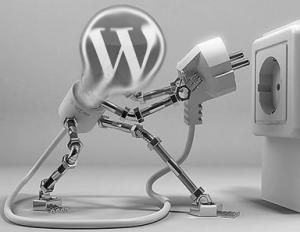 WordPress plugins conflict