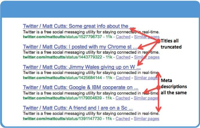 Duplicate meta tags mistake