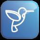 Google Hummingbird Algorithm