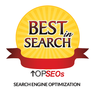TOP SEOs in Search